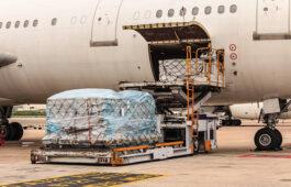 Airline loanding cargo.